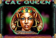 Online slot machines Cat Queen