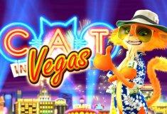 Online slot machines Cat in Vegas