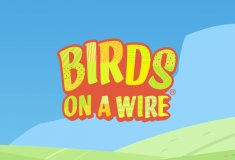 Online slot machines Birds On A Wire